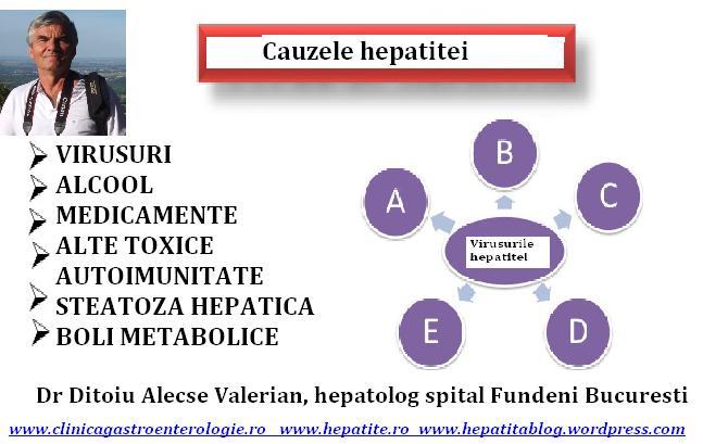 alimente permise in hepatita b