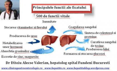 Functiile ficatului Dr Ditoiu gastroenterolog spital Fundeni Bucuresti