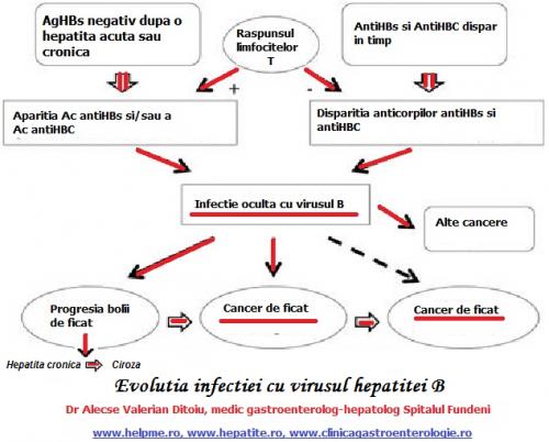 Infectia cu virusul B si cancerul de ficat