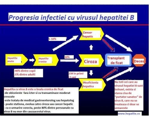 Progresia infectie VHB (1)