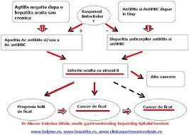 VHB si cancerul hepatic